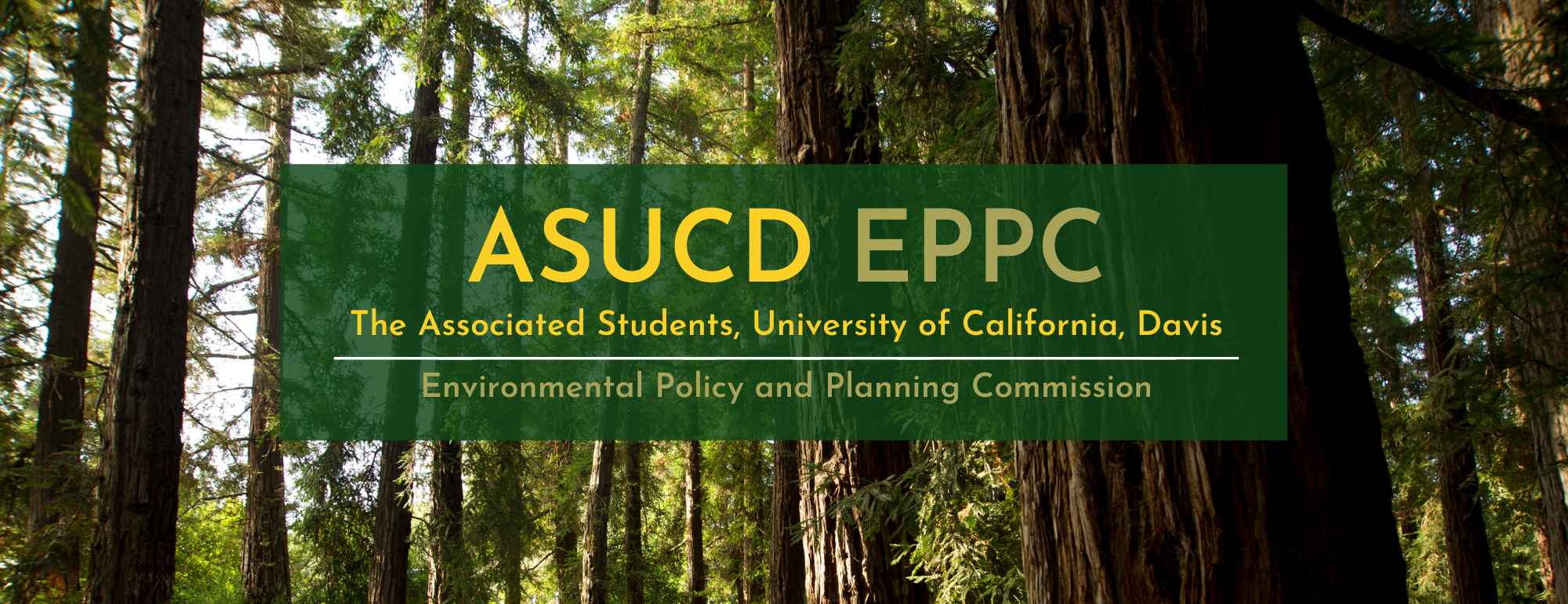 Text saying ASUCD EPPC Associated Students of University California, Davis, Environmental Policy and Planning Commission on a background of redwood trees.